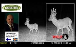 WJ Hunting Roe Deer Survey