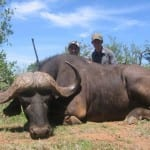 Cape-Buffalo-Hunting-Pic-150x150